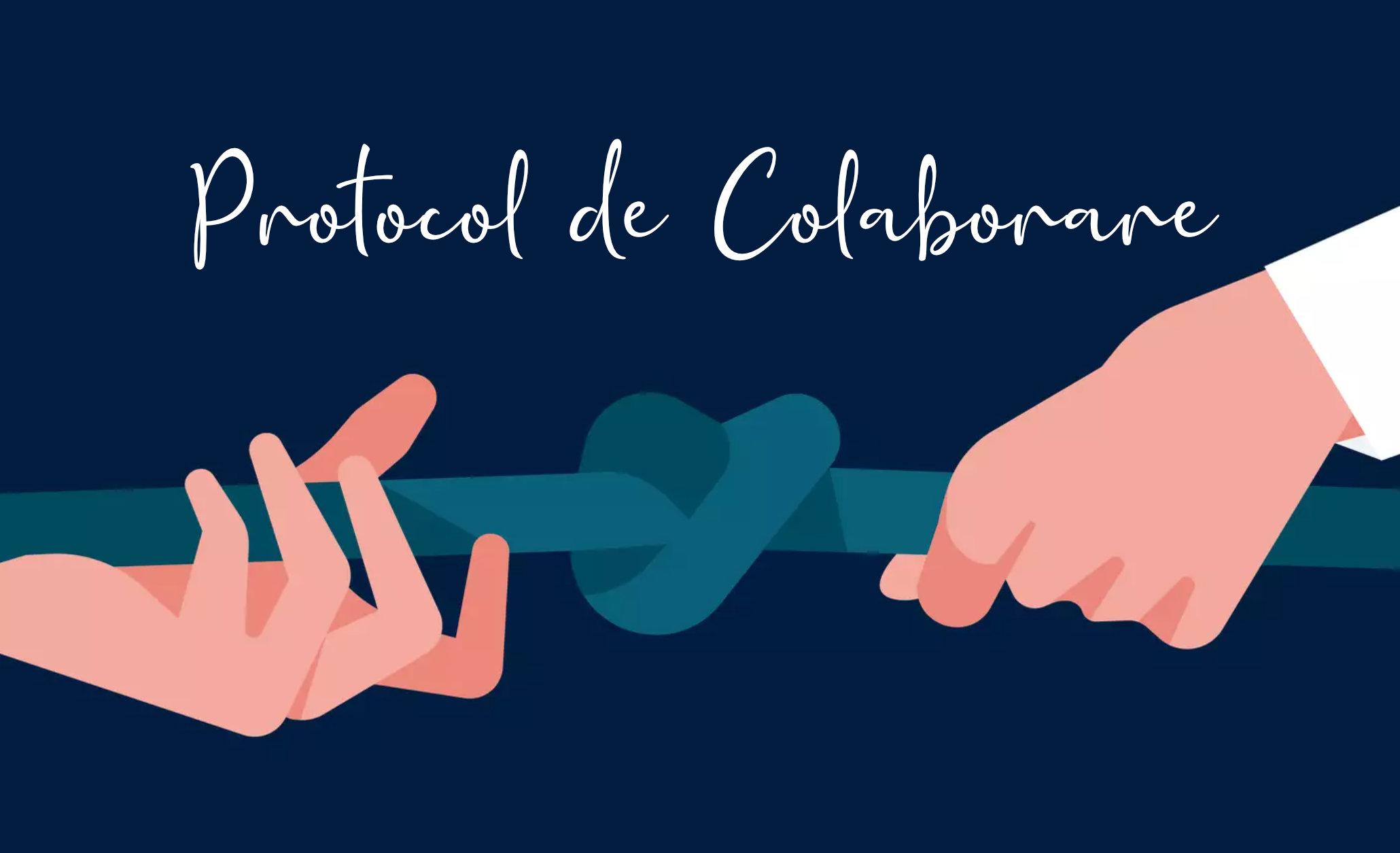 protocol-de-colaborare